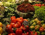 سايبردودو والتغذية  (1-55)