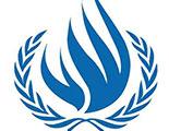 مفوضية الأمم المتحدة العليا لحقوق الإنسان